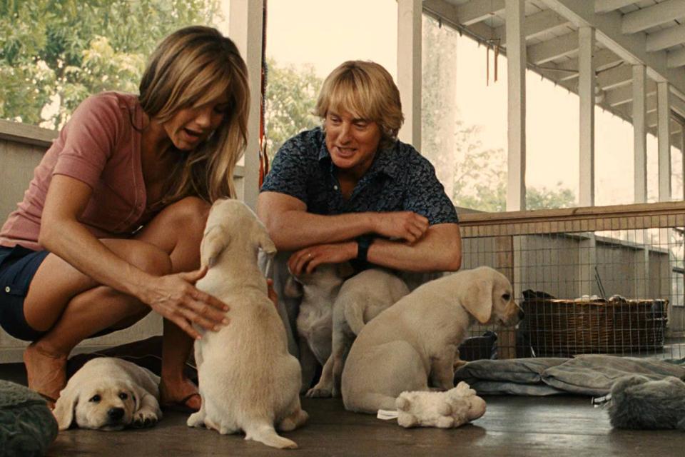 Amor pelos pets: 5 filmes de animais para você aproveitar as férias de inverno