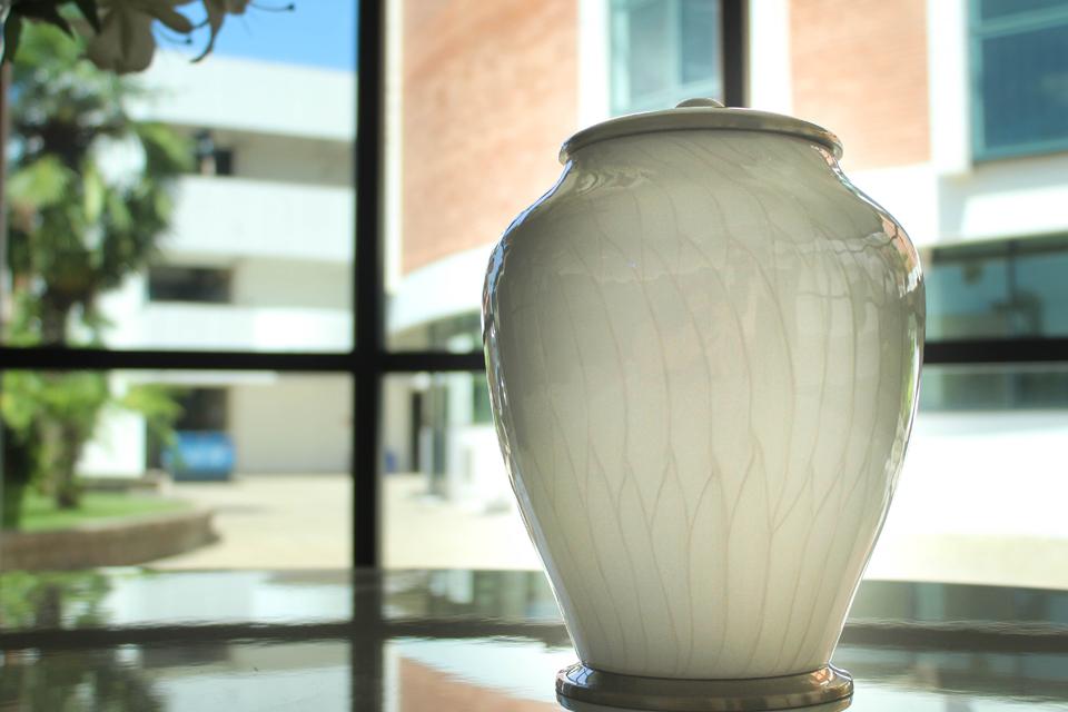 10 mitos e verdades sobre a cremação para você entender melhor o processo